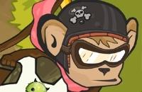 Macaco Motorcross Ilha