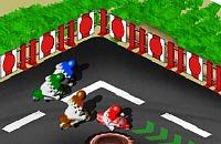 Minibike Race