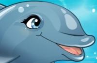 Mon Dolphin Salon Mondial
