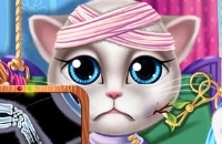 Kitty Hospital Recovery