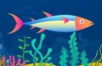 Gehen Fisch