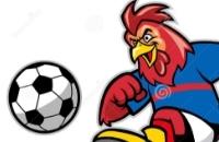 Speel nu het nieuwe voetbal spelletje Haanvoetbal