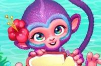 Mundo De La Fiebre De La Fruta
