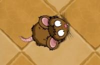 Tippen Sie Auf Die Ratte
