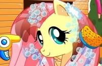 Netter Pony-Friseursalon