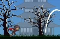 Running Ninja
