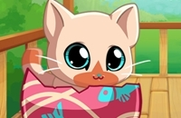 My Pocket Pets: Kitty Cat
