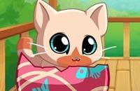 Meus Animais De Estimação De Bolso: Kitty Cat