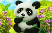 Glücklicher Panda