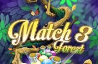 Match 3 Bosque