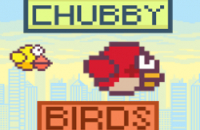 New Game: Chubby Birds