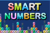 New Game: Smart Numbers