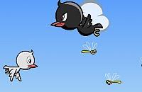 Vogel voeren