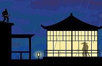 Ninja in de Nacht