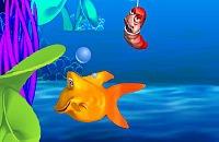 Fishy 6
