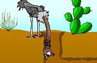 Struisvogel Nek