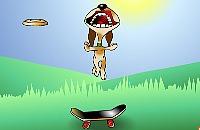 Frisbee Hond 1