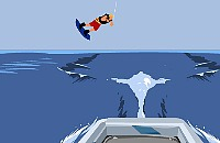 Jeux de Wakeboarding