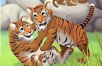 Tigre Cuidados