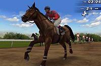 Paarden Race