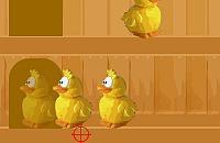Chicken Shootout