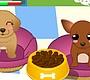 Speel het nieuwe girl spel: Hondenopvang
