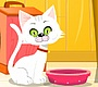 Play the new Girl Flash Game: Virtual Cat