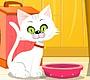 Speel het nieuwe girl spel: Virtuele Kat
