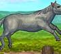 Speel het nieuwe girl spel: Mijn Dappere Paard