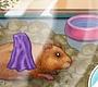 Speel het nieuwe girl spel: Mijn Kleine Hamster