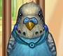 Play the new Girl Flash Game: My Little Parrot