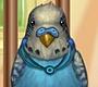 Speel het nieuwe girl spel: Mijn Kleine Papegaai