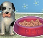 Play the new Girl Flash Game: My Dog