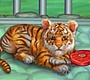 Play the new Girl Flash Game: My Tiger