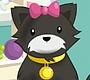 Speel het nieuwe girl spel: Schattige Dieren Verzorgen