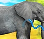 Play the new Girl Flash Game: Clever Elephant