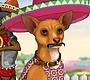 Speel het nieuwe girl spel: Chihuahua Aankleden