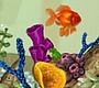Play the new Girl Flash Game: Shining Gold Fish