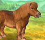 Speel het nieuwe girl spel: Mijn Lieve Pony