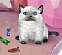 Play the new Girl Flash Game: Ms. Kitty