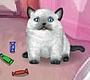 Speel het nieuwe girl spel: Ms. Kitty
