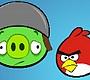 Speel het nieuwe girl spel: Angry Birds Combos