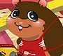 Speel het nieuwe girl spel: Hamster Verzorgen