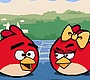 Speel het nieuwe girl spel: Rollende Angry Birds