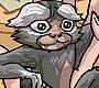 Speel het nieuwe girl spel: Aapje als Huisdier