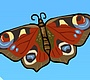 Speel het nieuwe girl spel: Baby Vlinder