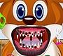 Speel het nieuwe girl spel: Dieren Tandarts