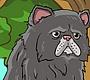Speel het nieuwe girl spel: Perzische Kat