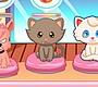 Speel het nieuwe girl spel: Dierenwinkel Runnen