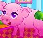 Speel het nieuwe girl spel: Varkentje Verzorgen